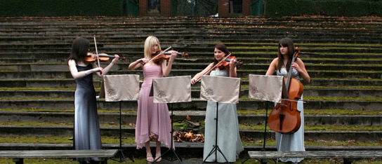 The Cairn String Quartet : profile picture